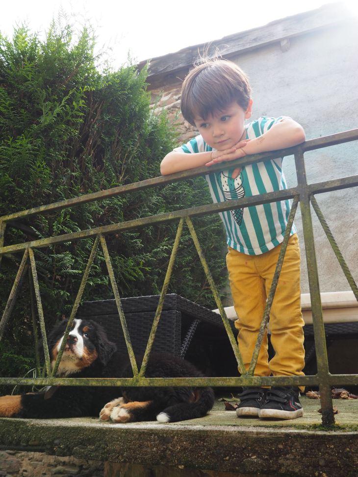 chien et petit garcon-4230743